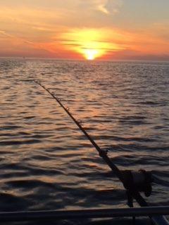 Sunset Rod Shot