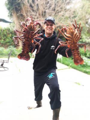 twin-lobsters